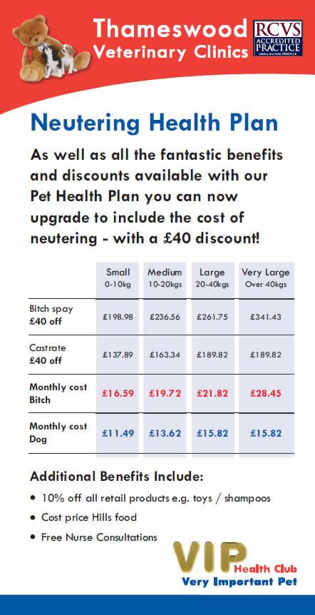 Neutering offer at Thameswood Vets