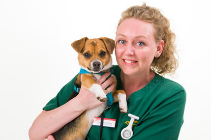 nurse at Thameswood Vet